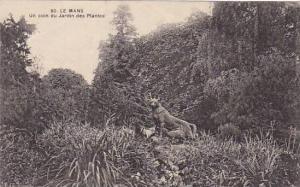 France Le Mans Un coin s Jardin des Plantes