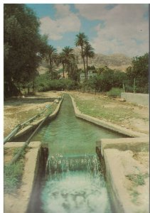 Postcard - Irrigation Channel From the Spring Of Elisha - Jericho Israel 586