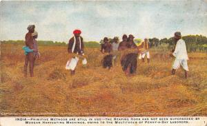 India~Natives Farming Wheat~International Harvester-Case IH~Chicago IL~1909 Pc