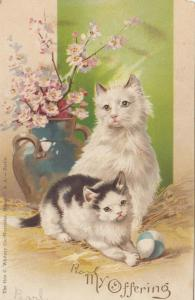 White Cat Sitting & Tuxedo Cat playing with ball, My Offering, PU-1907