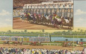 Hallandale Beach , Florida , 1930-40s ; Gulfstream Park Horse Race Track
