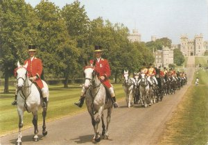 The Queen procession in The Long Walk. Horses  Modern english PC. Continental