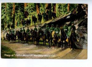 191695 USA Cal Mariposa Grove Troop on Horse Vintage RPPC