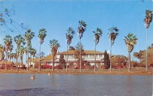 McAllen TX~Valley Home Of Former Texas Governor Allen Shivers~Palm Trees 1963