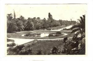 RP: ALGER - Jardin d'Essai - Piece d'Eau, Algeria , 30-40s