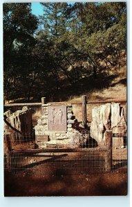 Petrified Forest California Plaque Petrified Charlie Vintage Postcard D84