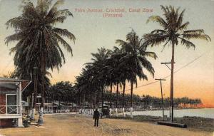 Cristobal Panama Canal Zone Palm Avenue Antique Postcard J57238