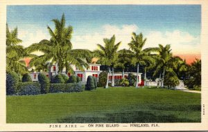 Florida Pineland Pine Aire Hotel On Pine Island Curteich