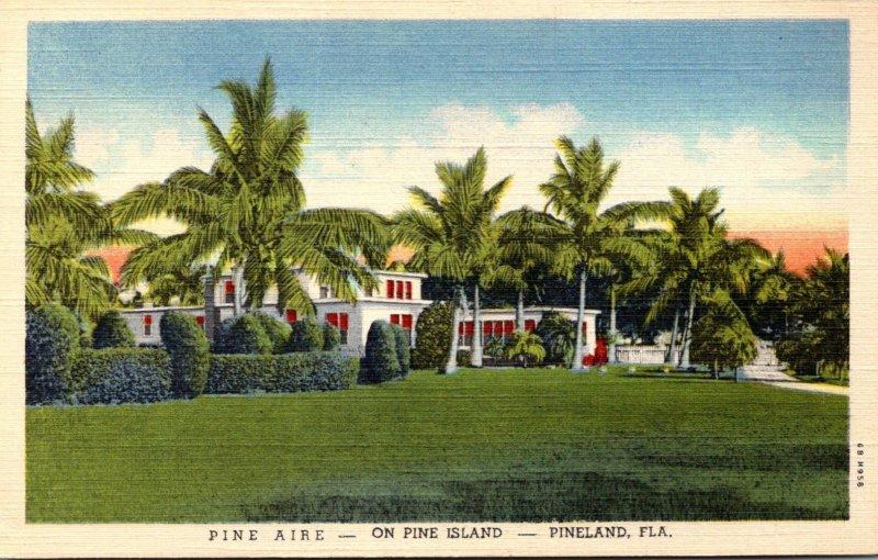 Florida Pineland Pine Aire Hotel On Pine Island Curteich