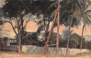 Afrique Occidentale (Senegal) Dakar Le Jardin et le Palais de la Marine 1916