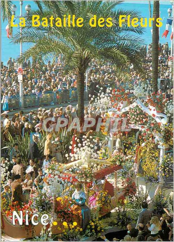 Nice Modern Postcard The Battle of Flowers