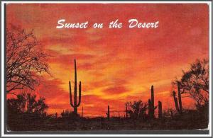 Arizona Sunset on the Desert Postcard - [AZ-011]