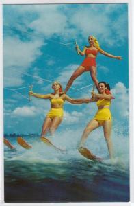 Water Skiing, Cypress Gardens FL