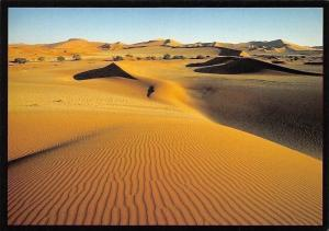 Namibia Sea of Sand Dunes of the Namib Desert Landscape