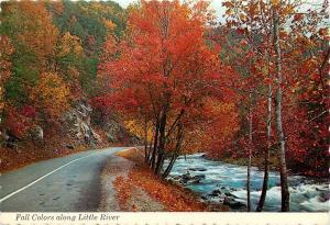Little River Smoky Mountains Fall Autumn Scene Tennessee TN Postcard
