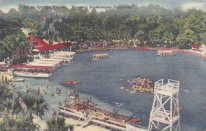 Florida Silver Springs Florida Natures Underwater Fairyland 1950