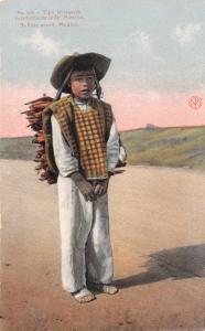 TIPO INDIGENA VENDEDOR de LENA~MEXICO~YOUNG BOY SELLING WOOD-F MARTIN POSTCARD