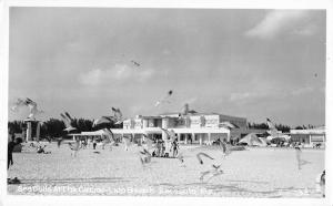 Sarasota Florida Sea Gulls At Casino Lido Beach Real Photo Antique PC K27393