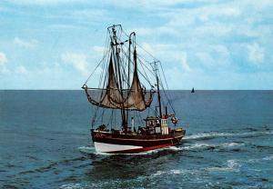 Belgium Fishing Boat Bateau Schiff
