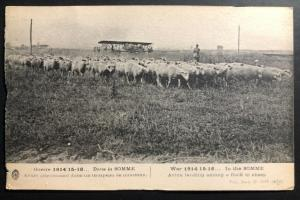 Mint France Postcard RPPC Early Aviation WWI In Somme Airplane Landing