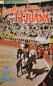 Mexico - Tijuana. In the Bull Ring