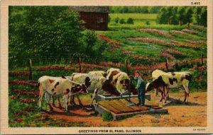 Vtg CT Linen Postcard Greetings From El Paso IL Illinois - Cows Farming Well UNP