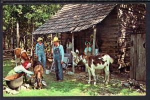 Uncle Willie's Cabin,Bull Shoals,AR BIN