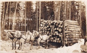 RP: Logging ,  A Fine Load, Saskatchewan , Canada , PU-1913 Prince Albert