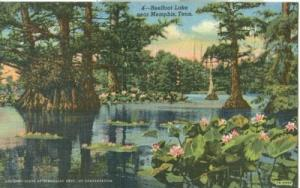 Reelfoot Lake near Memphis, Tennessee, 1951 used linen Po...
