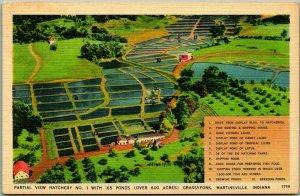 Martinsville, Indiana Postcard Partial View HATCHERY NO. 1, Grassyfork Linen