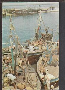 Fish Harbour Karachi Pakistan Postcard BIN