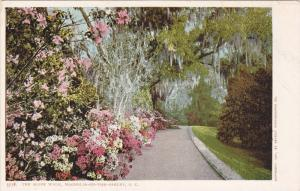 The Slope Walk,Magnolia-On-The-Ashley,South Carolina,00-10s
