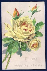 Good Wishes for Your Birthday Yellow Roses used c1910