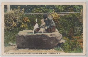 Stone Watering, West Claremont Road, Claremont NH