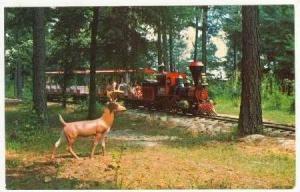 Miniature-Small Train, Amigoland-Fun Park, Carolina & Upper Mexico R.R., Sout...