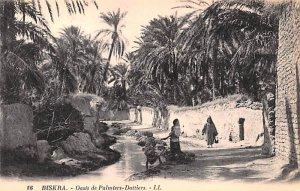 Oasis de Palmiers Dattiers Biskra Algeria Unused