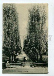 3089483 CAUCASUS Kislovodsk Avenue of poplars Vintage PC