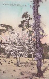 Wisteria And Dogwood Southern Pines North Carolina Albertype Handcolored