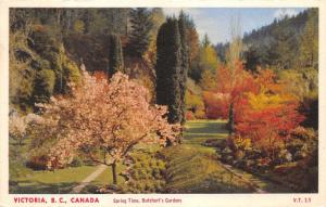 Victoria British Columbia~Butchart's Gardens in Spring Time~Blossoming Tree~'40s