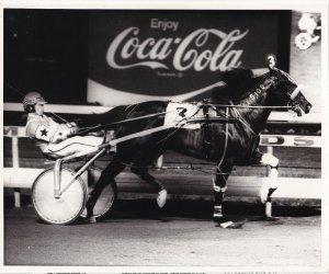 MEADOWLANDS, Harness Horse Race, T K'S SKIPPER (5) winner