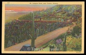 Mt. Lemmon Road, near Tucson, Arizona