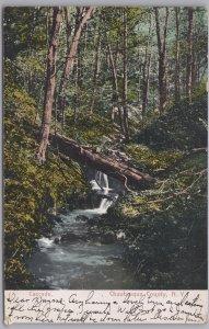 Chautauqua County , N.Y., Cascade on the River - 1906