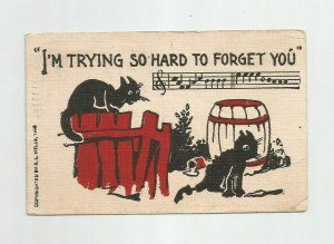 LINEN POSTCARD ~ Cats ~ Trying So Hard to Forget You ~ RL Wells ~ Mailed 1909