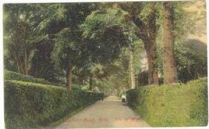 Spencer Road, Ryde, Isle Of Wight, United Kingdom, 1900-1910s