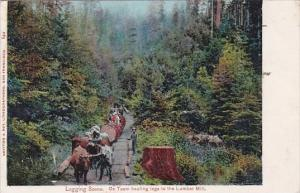 Trees Logging Scene Ox Team Hauling Logs To The Lumber Mill 1905