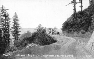 The Summit near Big Basin, California Redwood Park c1910s Vintage Postcard