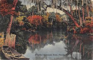 BR45388 Beautiful Suwannee River Florida usa