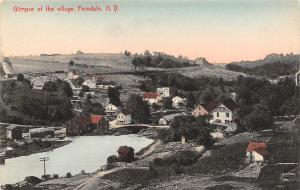 Ferndale New York~Village Birdseye~Homes~Pond~2 Miles From Clyde~1908 Handcolor