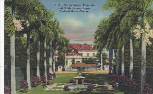 Widener Fountain and Club House Lawn Hialeah Race Course Miami Florida Curteich