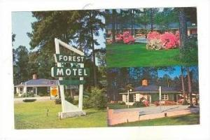 3 Views of Forest Motel,Columbia,South Carolina,40-60s